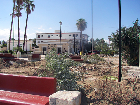 Mijares garden demolition