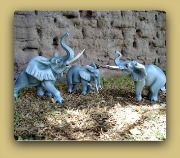 Sermel Elephants