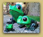 Sermel Frogs