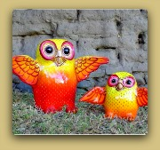 Sermel Owls