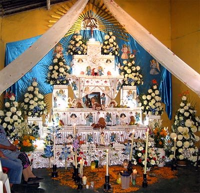 Chrysanths in Day of the Dead altar