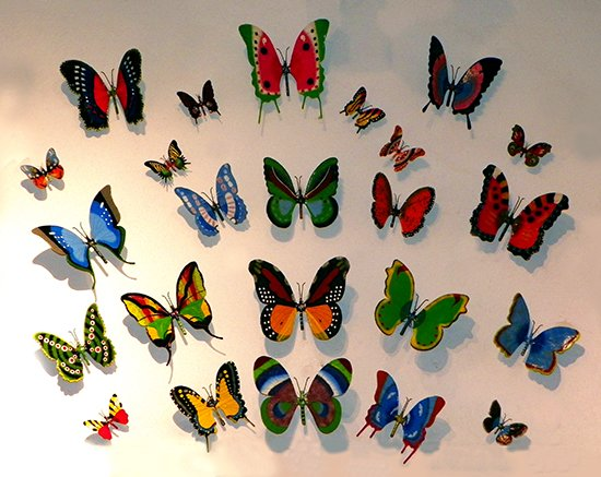 Decorative butterflies wall